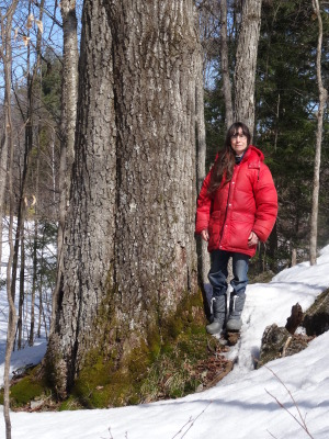 Cathy Keddy poses beside a large red oak tree on her property