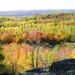 Vibrant fall colours from the lookout on Blueberry Mountain