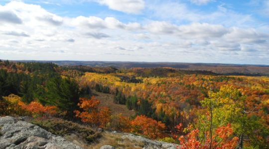 Blueberry Mountain Fall Colours Nature Walk, October 14