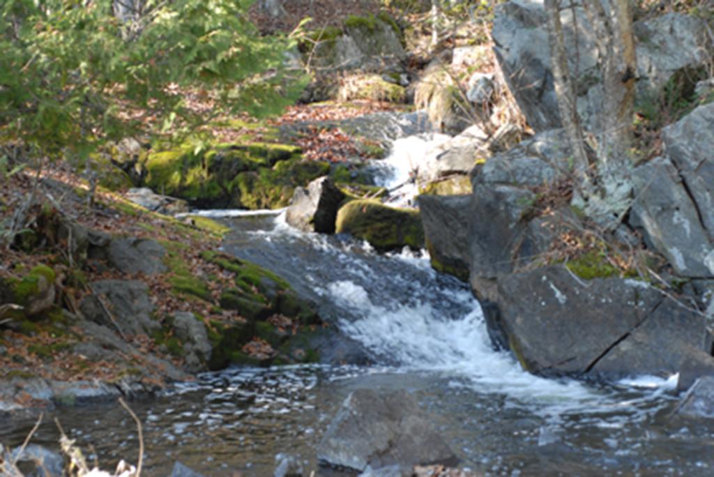 Waterfall along Clyde Creek at Clydelands